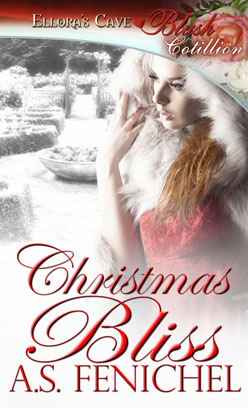 Christmas Bliss book cover
