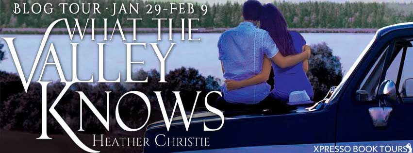 Valley blog tour banner
