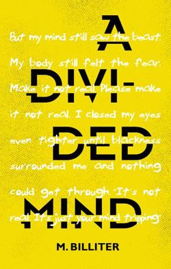 Divided Mind cover