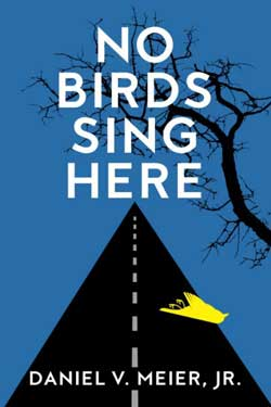 No Birds Sing here cover